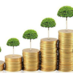 Jak chytře investovat – Pavel Bambásek
