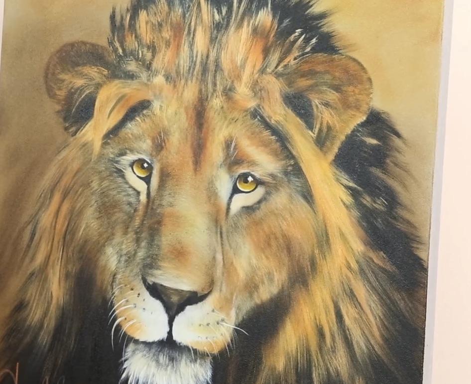 Jak malovat zvířata